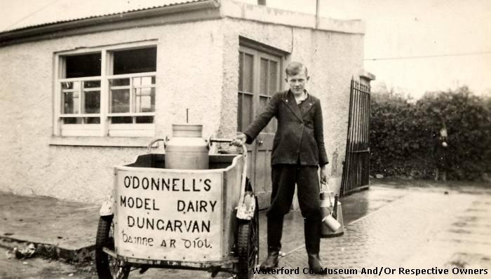 Don Condon At The O'Donnell Dairy, Dungarvan