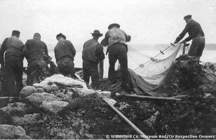 Fishermen Fishing For Sprats, Ardmore