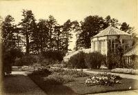 Conservatory And Glass House, Belleview House, Waterford City