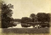 Boating On The Lake, Ballinamona House, Tramore Road, Waterford