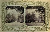 Stereoscopic View,  From The Dark Walk, Newtown Anner House, Co Tipperary