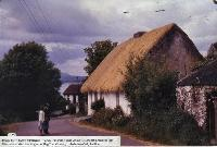 New Thatched Roof On Tom Whelan's House, Ballynagoul, (Baile Na nGall) Ring